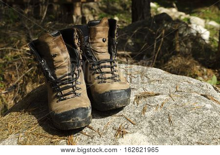 Touristic shoes on a rock and pine needles