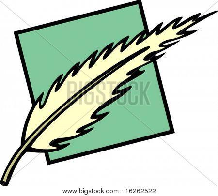 bird feather