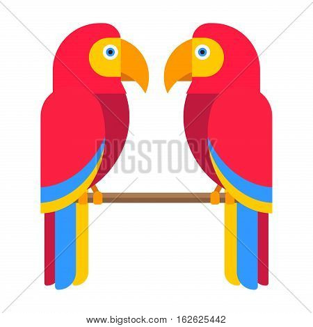Cartoon parrot wild bird. Tropical feather zoo fauna flying ara. Exotic animal vivid bright vector illustration. Cute design fly jungle pretty wing macaw lovebirds.