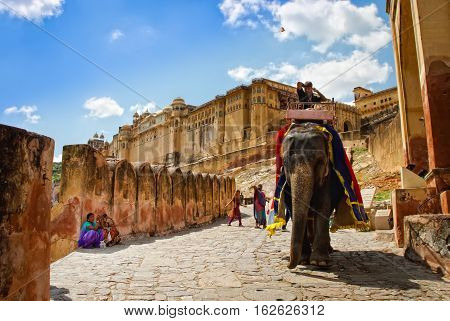 Decorated elephant carry driver in Amber Fort Jaipur Rajasthan India.