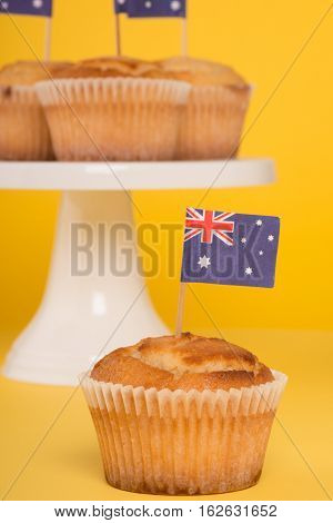 Australia Day Cupcake