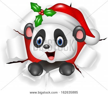 Vector illustration of Cartoon baby panda bear ripping through the background