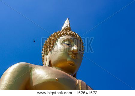 Golden Buddha in Ang Thong Province of Thailand