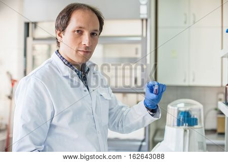 Male Lab Technician Holding A Test Tube With Sample
