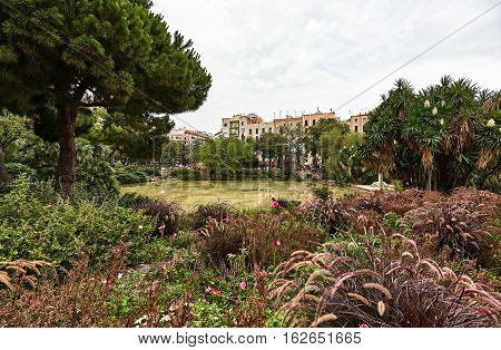 Beautiful corner of unspoiled nature among the streets of Barcelona