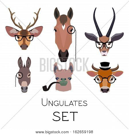 Vector hipster ungulates wearing monocle glasses or tobacco pipe cloven hoofed animals set. Lama deer antelope donkey horse isolated Poster banner print advertisement design element Flat cartoon style