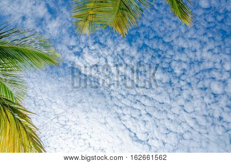 Sky View With White Clouds From Eagle Beach, Aruba