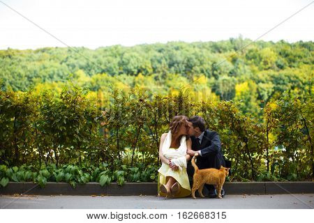 Couple Sit Kissing On The Boarder While A Red Cat Leans To Them