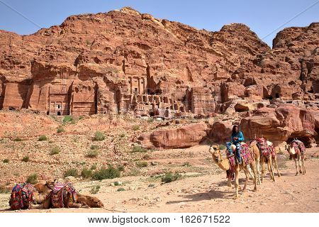 PETRA, JORDAN - MARCH 9, 2016: A bedouin riding his camels with the Royal Tombs in the background