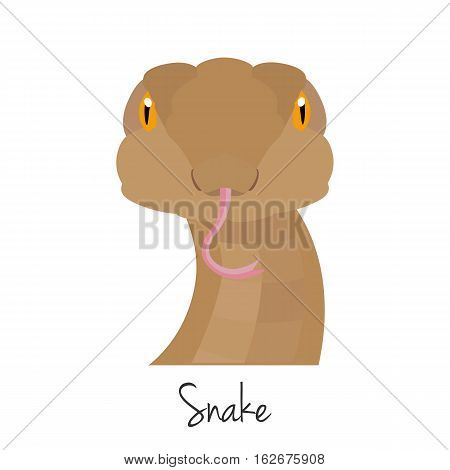 vector snake head isolated. Flat style, cartoon object. poster banner print advertising, design element. Wild animal, reptile