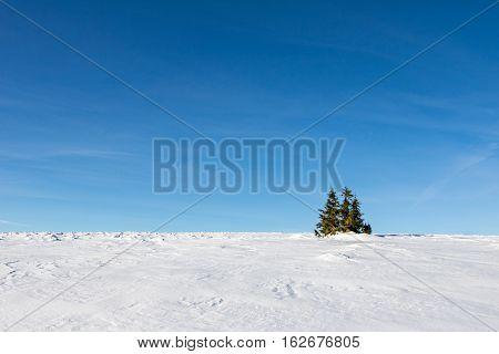 Winter Minimalist Landscape With Snow, Sky And Trees