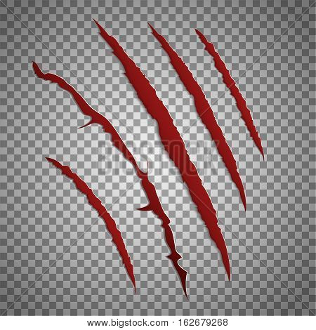 Slash scratch set on transparent background. Vector scratching beast red claw marks. Shred torn of paw illustration