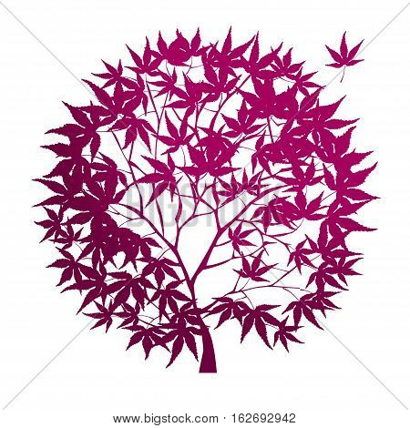 vector illustration of circle-shaped red maple tree