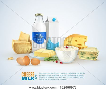 Milk products template with different sorts of cheese eggs carton and butter isolated vector illustration