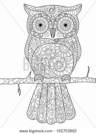 Owl on a branch coloring book for adults vector illustration. Anti-stress coloring for adult. Zentangle style bird. Black and white lines. Lace pattern