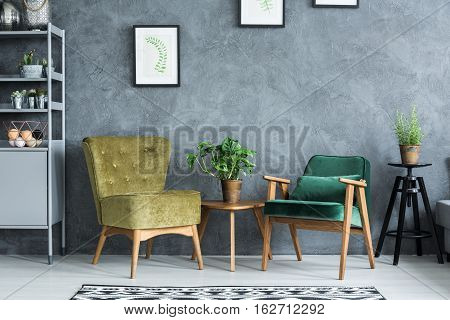 Flat with modern and stylish furniture and plants