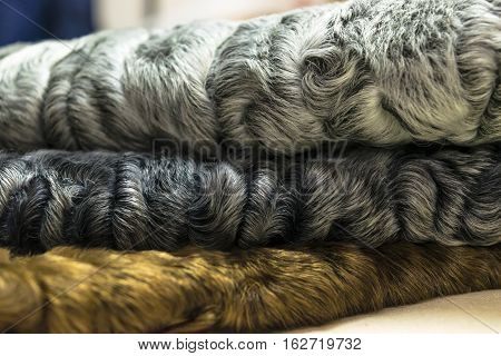 different colors of karakul pelts, lambskin texture, background