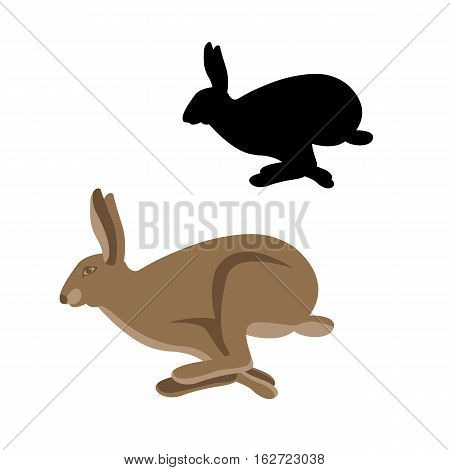 hare vector illustration style Flat set profile
