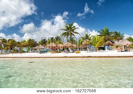 Mexico Costa Maya - February 1 2016: tropical beach at transparent sea or ocean water with sunbeds on white sand with green palms tourist resort on sunny summer day on blue sky