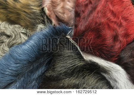 different pieces of colored skins of karakul lambskin texture, background