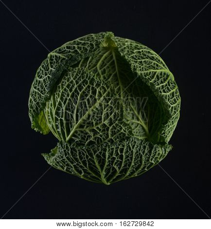 Ripe green savoy cabbage on a black background.