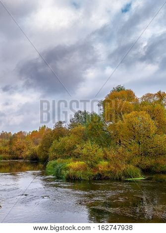 Autumn landscape, colorful leaves on trees, morning at river after cold night. Autumn stream. November scene.Fall morning river. Colors of river. Nature in autumn.
