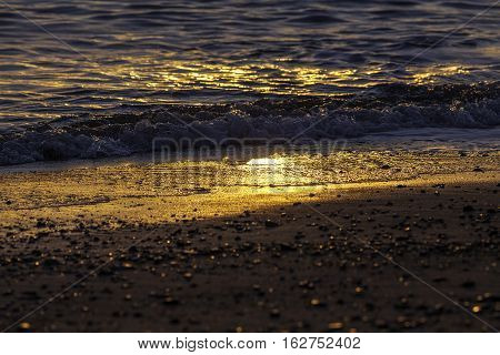 Shoreline at dawn. Early morning golden sun reflects off the wet sand by the shoreline of a tropical beach.