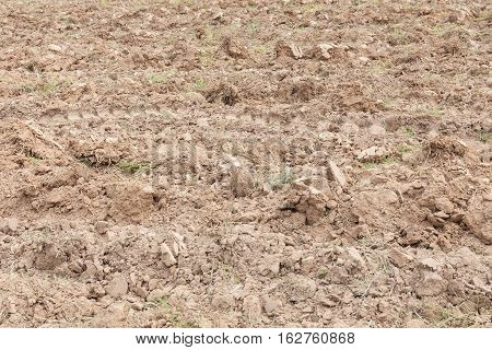 Dehydrate soil texture in agricultural ploughed field.
