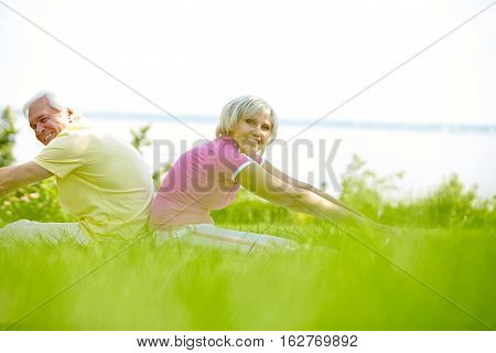 Senior couple doing stretching exercise sitting back to back on green grass