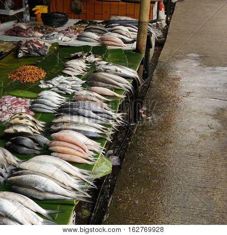 Freshwater fish sells in traditional fish market photo taken in Bogor Indonesia java