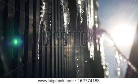 cicles drop of water drips down abstract blue winter ice background frozen