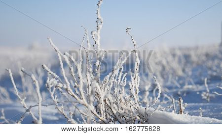frozen grass next to highway route travel winter movement of auto