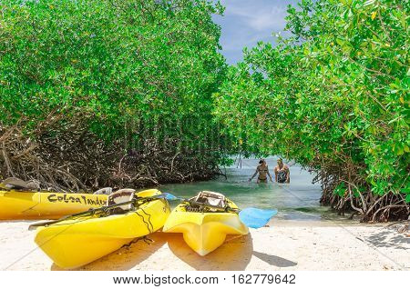 Kayaks At The Mangel Halto Beach In Aruba