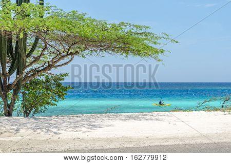 Man Riding A Kayak By An Aruba Beach