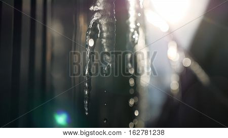 cicles drop of water drips down abstract blue ice winter background frozen