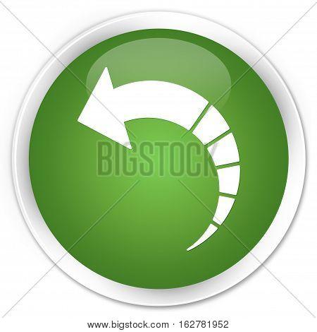 Back Arrow Icon Premium Soft Green Round Button
