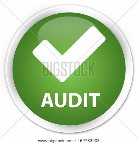 Audit (validate Icon) Premium Soft Green Round Button