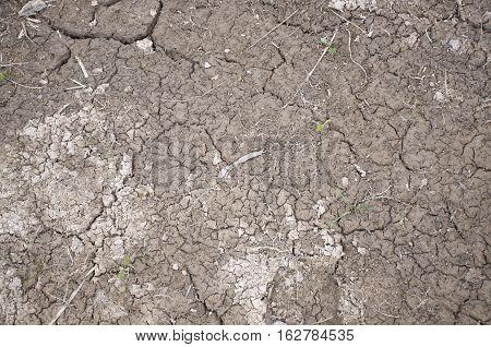 Dry cracked soil/ dirt desert flat texture for 3D work, textured backround