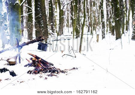 Winter Forest, The Tourist Warm Tea In A Pot