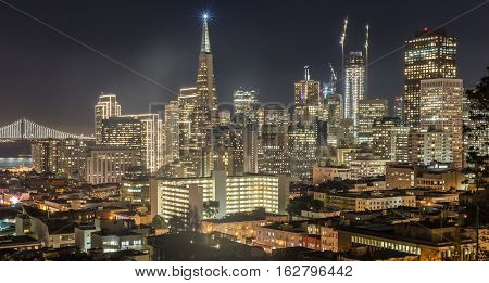 Night over San Francisco Downtown from Ina Coolbrith Park