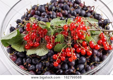 Black gooseberries and red currants. Fresh summer berries in a glass bowl.