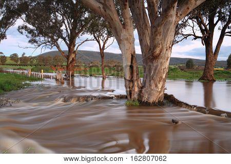 Muddy Floodwaters Australia
