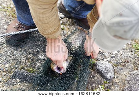 Caught fish in net - fishery and fisherman