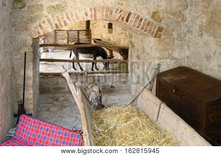 Barn With Hay And Donkey