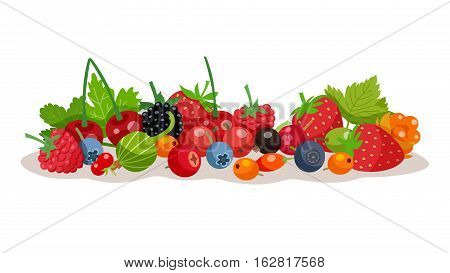 Composition from forest and garden berries with strawberry bilberry raspberry cloudberry gooseberry elements flat vector illustration