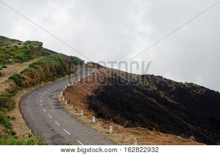 Road through burnt forest of Madeira 2016