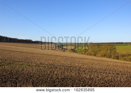 Valley With Harvested Fields