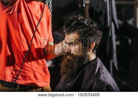 Bearded Man Has Blow Dry