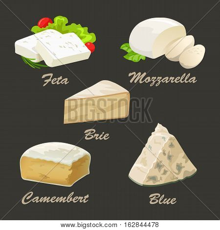Set of different kinds of white cheese. Realistic vector illustration with blue, brie, camembert, feta, and mozzarella. Curd collection used for logo design, advertising cheese or restaurant menu.