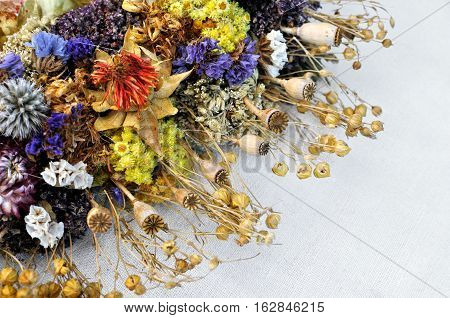 set of wild dried flowers in abstract composition on the canvas